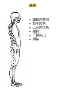 Diagram- round back
